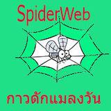 spiderweb159