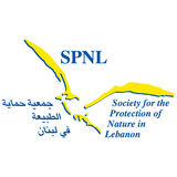 Profile for SPNL