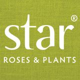 Profile for Star® Roses and Plants