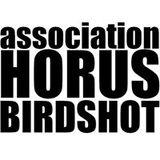 Profile for Sylvain Mignon Horus Birdshot