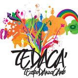 Profile for Tedacà
