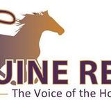 Profile for The Equine Report