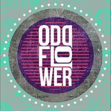 Profile for Oddflower