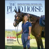 Profile for theplaidhorsemag