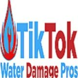 Tik Tok Water Damage Pros