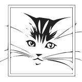 Jackite by Tori Tako Wind Designs - issuu