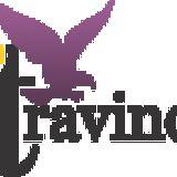 Profile for Travind Institute