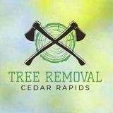 Cedar Rapids Tree Removal