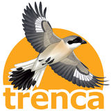Profile for trenca.org