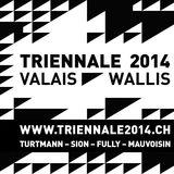 Profile for TRIENNALE2014.CH