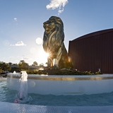 Profile for THE LION Richlands