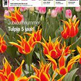 Tulpia