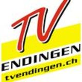 Profile for tvendingen