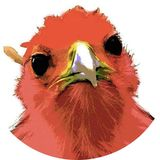 The Phoenix News