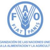Profile for FAO BOLIVIA/DOCUMENTACIÓN