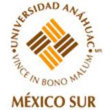 Profile for Universidad Anáhuac México Sur