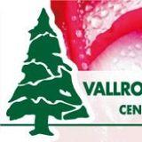 Vallromanes Verd, S.L.