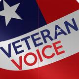 Profile for Veteran Voice, LLC