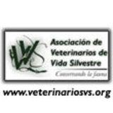 Profile for Veterinarios de Vida Silvestre