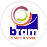 Profile for ville de Bram