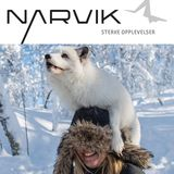 Profile for Visit Narvik