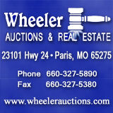 Profile for Wheeler Auctions & Real Estate, LLC