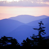 Profile for White Mountains Attractions Assoc.