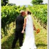 Profile for Winery Weddings