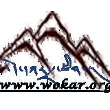 Profile for wokar