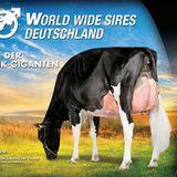 Profile for World Wide Sires Deutschland GmbH