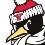 Profile for youngstownstate