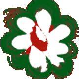 Profile for Rudy Raes Bloemzaden N.V.
