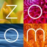 Profile for ZOOM Magazine